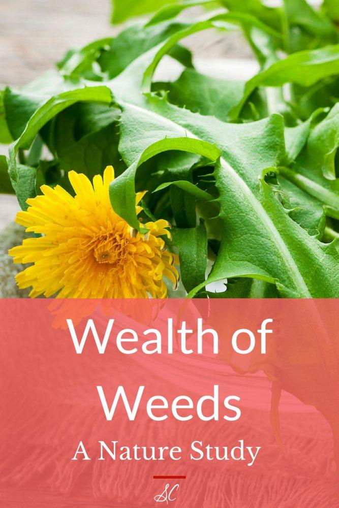 Wealth of Weeds