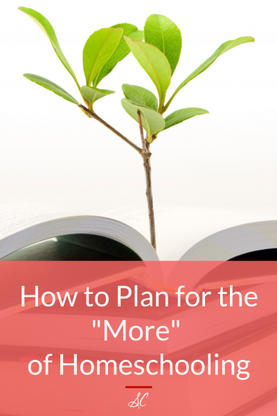 "How to Plan for the ""More"" of Homeschooling"
