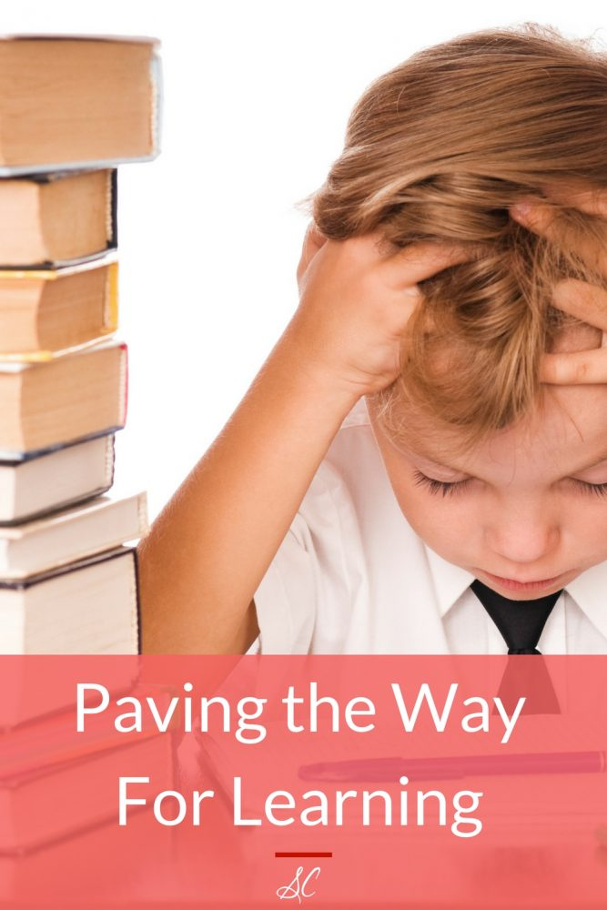 With thoughtful planning, lifestyle habits which can give a child an advantage when he is ready to start academics and reading, can be formed with minimal effort. The stages of early development are really not as technical as they are natural.